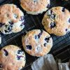 blueberry scones cooling on a rack