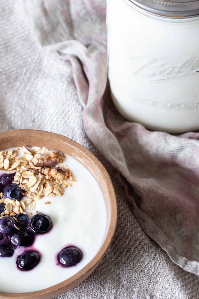 a bowl of homemade yogurt with blueberries and muesli, with a jar of fresh yogurt on the side